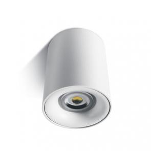 12105D Spot Aplicat fix GU10, IP20