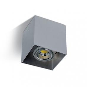 12134 Spot Aplicat fix GU10, IP20