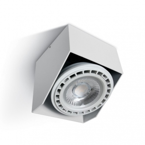 12138G Spot Aplicat orientabil GU10, IP20