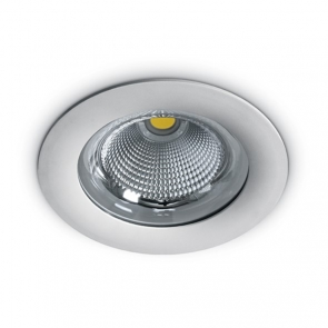 10130G Spot incastrat fix 30W, IP65